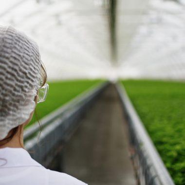 Lebensmittel- & Biotechnologie